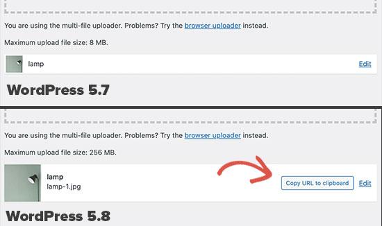 Brisbane WordPress Design Copy URL Update